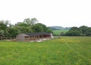 Thumbnail Equestrian property for sale in West End Lane, Medstead