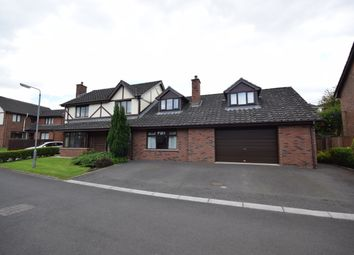 Thumbnail 5 bedroom detached house for sale in Shelling Park, Lisburn