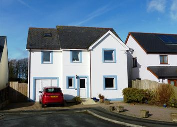 Thumbnail 4 bed detached house for sale in Llain Drigarn, Crymych, Pembrokeshire