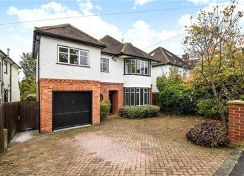 Thumbnail 4 bed detached house for sale in Belmont Drive, Maidenhead, Berkshire
