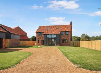 Thumbnail 4 bed detached house for sale in Herne Lane, Beeston, King's Lynn