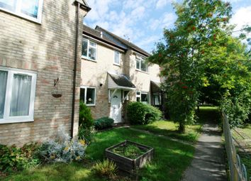 Thumbnail 2 bed property to rent in Cleveland Close, Highwoods, Colchester