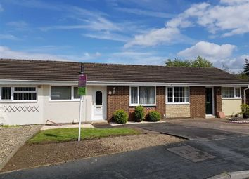Thumbnail 2 bed terraced bungalow for sale in Peregrine Close, Covingham, Swindon