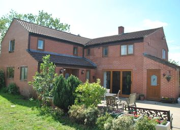 Thumbnail 5 bedroom detached house for sale in Westport, Langport
