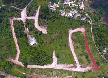 Thumbnail Land for sale in Browns Town, St Ann, Jamaica