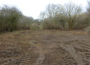 Thumbnail Property for sale in Hollow Way Hill, Aldeby, Beccles