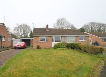 Thumbnail 3 bed bungalow to rent in Rumbelow Road, Tiverton