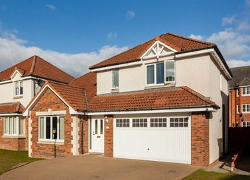 Thumbnail 4 bed detached house for sale in Talisker Place, Perth