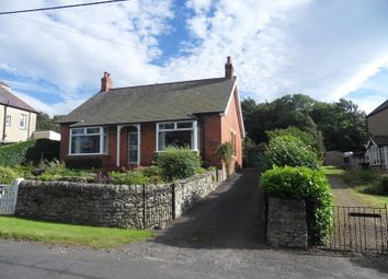 Thumbnail 2 bedroom bungalow to rent in Allendale, Hexham