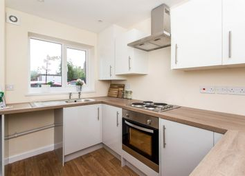 Thumbnail 3 bedroom town house for sale in Peel Street Villa's, Langley Mill, Nottingham