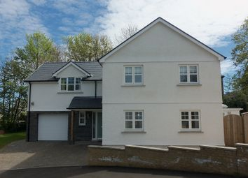4 bed detached house for sale in Maes Y Glyn, Johnstown, Carmarthen. SA31
