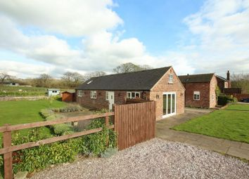 Thumbnail 2 bed detached bungalow to rent in Well Lane, Gillow Heath, Biddulph