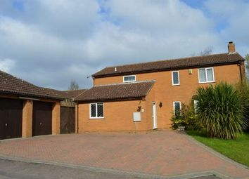 Thumbnail 4 bedroom detached house for sale in Hilberry Rise, Berrydale, Northampton