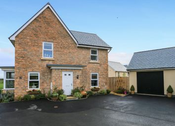 Thumbnail 4 bedroom detached house for sale in Gould Place, Newton Abbot