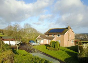 Thumbnail 5 bed detached house for sale in With One Bedroom Annex, 19 Knox Road, Brockhollands, Lydney