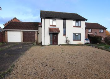 Thumbnail 6 bed detached house to rent in Egret Crescent, Colchester