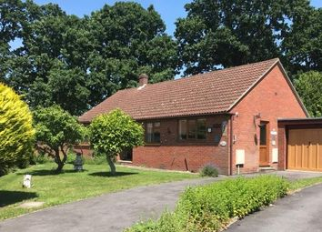 Thumbnail 3 bed bungalow for sale in Littlewood Gardens, Locks Heath, Southampton