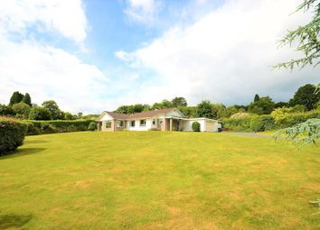 Thumbnail 3 bedroom detached bungalow for sale in Colehayes, Bovey Tracey, Newton Abbot, Devon