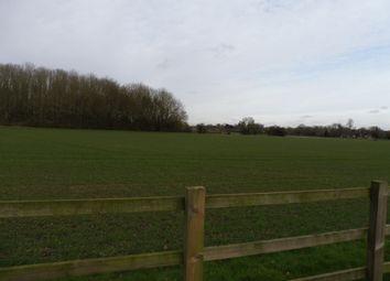 Thumbnail Land for sale in Saxtead Road, Dennington, Woodbridge