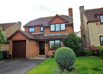 Thumbnail 4 bed detached house to rent in Toms Close, Chard