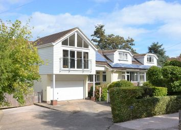 Thumbnail 6 bedroom bungalow for sale in Galmpton Farm Close, Galmpton, Brixham