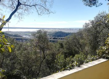 Thumbnail 4 bed property for sale in Massarosa, Toscana, 046018, Italy