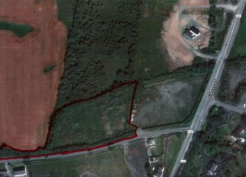Thumbnail Property for sale in Milford Compound, Milford, Tinryland, Carlow