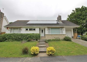 Thumbnail 3 bed detached bungalow to rent in Jesmond Avenue, Highcliffe, Christchurch