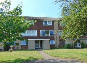 Thumbnail 2 bed flat to rent in Bath Road, Reading, Berkshire