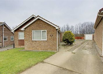 Thumbnail 3 bedroom detached bungalow to rent in Hollythorpe Close, Hasland, Chesterfield, Debyshire