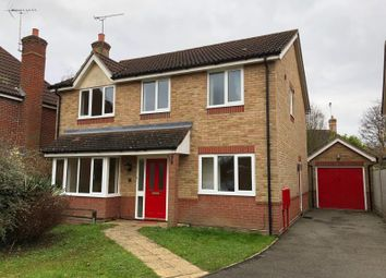 Thumbnail 4 bed detached house to rent in Brettenham Crescent, Ipswich