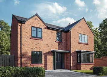 "Thumbnail 4 bed detached house for sale in ""The Cottingham"" at Boundary View, Darlington"