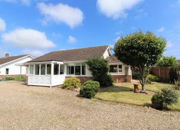 Thumbnail Detached bungalow for sale in St. Johns Road, Stalham, Norwich