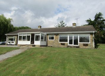 Thumbnail 4 bed bungalow to rent in Tanglewood, Newmarket Lane, Clay Cross