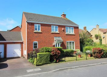 Thumbnail 4 bed link-detached house for sale in Brutton Way, Chard