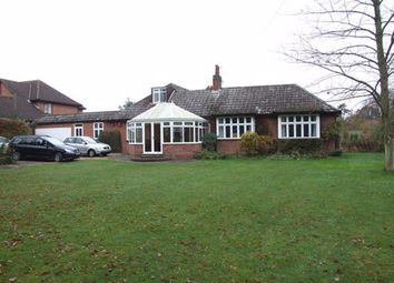 Thumbnail 4 bed detached house to rent in The Street, Brundall, Norwich