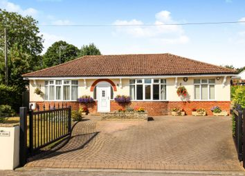 Thumbnail 5 bed detached bungalow for sale in Figsbury Road, Winterbourne Dauntsey