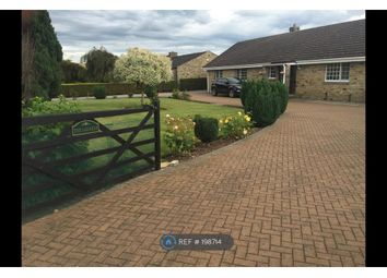 Thumbnail 4 bed bungalow to rent in Swale Pasture Lane, Catterick