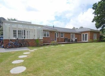 Thumbnail 4 bed detached bungalow to rent in Jennings Way, Barnet
