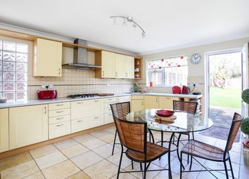 Thumbnail 4 bed bungalow to rent in Lymington Bottom Road, Medstead, Alton