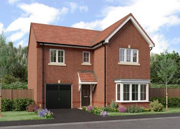 "Thumbnail 4 bed detached house for sale in ""The Seeger"" at Netherton Colliery, Bedlington"