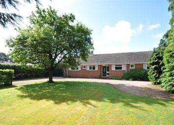Thumbnail 4 bed detached bungalow for sale in Hanbury Road, Droitwich