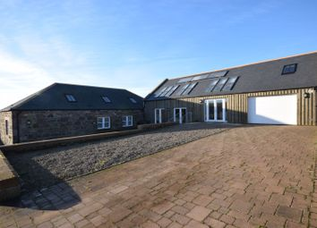 Thumbnail 4 bed detached bungalow for sale in Kinneff, Montrose