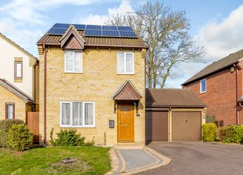 Thumbnail 3 bedroom detached house for sale in Dashwood Close, Ipswich, Suffolk