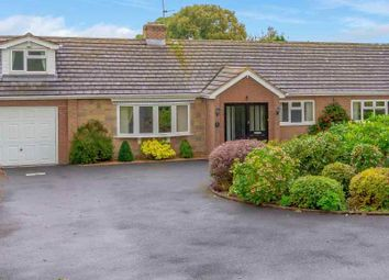 Thumbnail 4 bed bungalow for sale in Melrose Drive, Shrewsbury