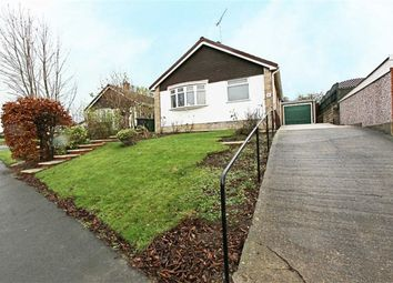 Thumbnail 3 bed detached bungalow to rent in Meadow Hill Road, Hasland, Chesterfield