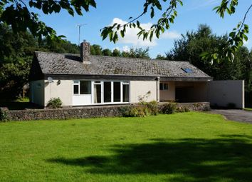 Thumbnail 3 bed bungalow for sale in Combe Florey, Taunton