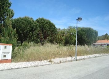 Thumbnail Land for sale in Santo Estevão, Santo Estevão, Benavente
