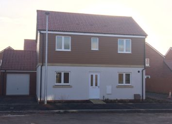 Thumbnail 3 bed detached house to rent in Somerville Crescent, Exeter