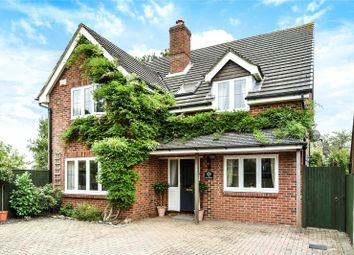 Thumbnail 4 bed detached house for sale in Chase Grove, Waltham Chase, Hampshire
